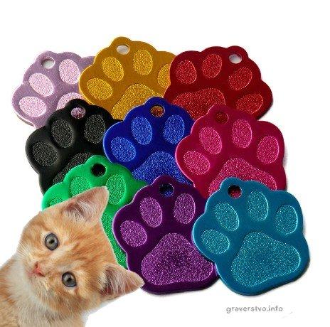 graviran obesek za mačke tačka