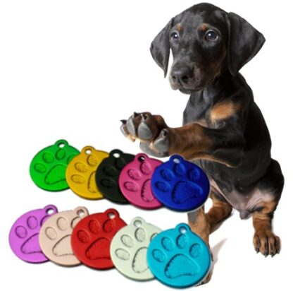 Obeski za pse taca